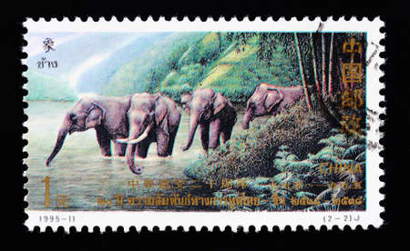 thai language: CHINA - CIRCA 1995: A Stamp printed in China shows the Thai elephants for the 20 years anniversary of diplomatic relations between China and Thailand, circa 1995