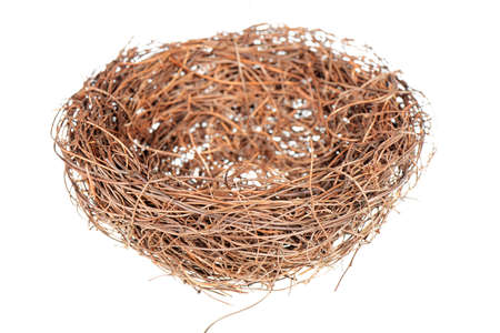 Birds nest isolated on a white background photo