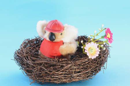 Nest with a Toy Koala on a blue background photo
