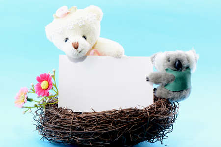 Nest with a blank white card held by a toy teddy bear and koala on a blue background photo