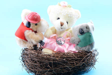 Nest with a toy Teddy Bear and two koala on a blue background photo