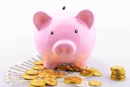 Pink Piggy bank with gold coins and dollar banknotes photo