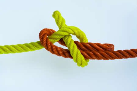 Sheet bend knotted on a white background.