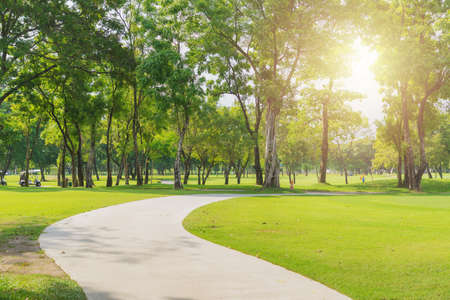 New pathway and beautiful trees track for running or walking and cycling relaxin the park on green grass field on the side of the golf course. Sunlight and flare background concept.