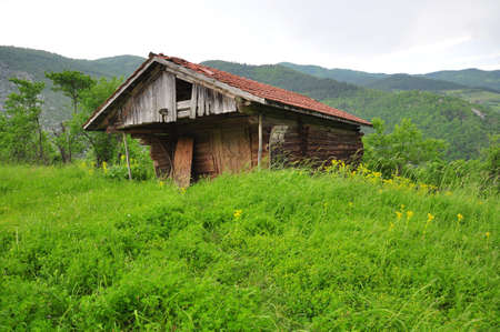 wooden hut on grass