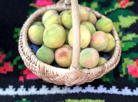 Small unripe peaches in a basket