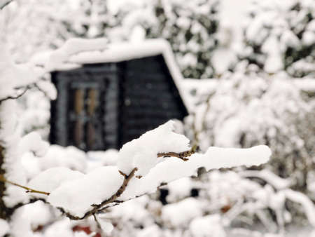 branches and wooden hut under snow in wintertime Stock Photo
