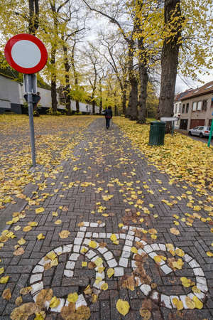 bicycle road sign on ground at a park in autumn