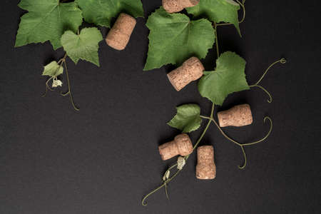 natural background with green grape leaves and bottle corks on black