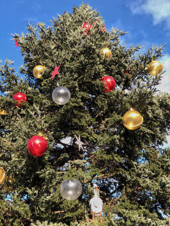 decorated pine tree against blue sky for new year with copy space