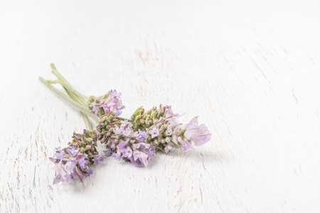 closeup bunch of lavender flower on a wooden table with copy space 스톡 콘텐츠