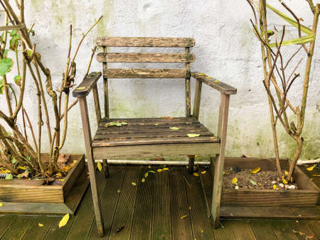 an old wooden chair at park in autumn