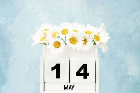 White cube calendar for 14 May with daisy flowers over blue background with copy space