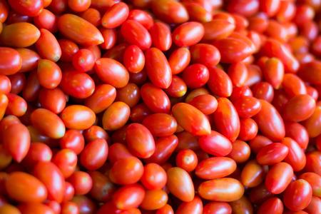 etymology: tomato