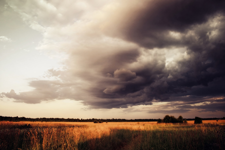Wheat Field under Dramatic Sky with Dark Clouds, Approaching Thunderstorm, Summer Landscape. Stock Photo