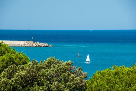 Idyllic sea view of the Mediterranean Sea Italy. Foreground green treetops. Breakwater Concrete Tetrapods Stock fotó