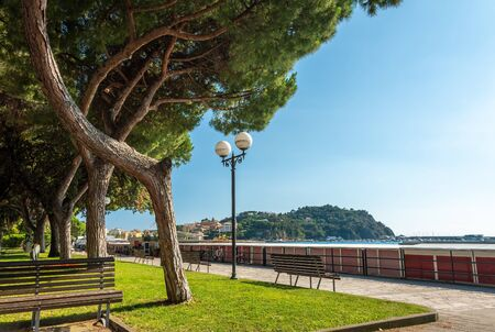 Benches and trees along marina walkway promenade. Harbor view. Italy