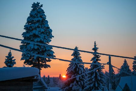 Beautiful sunset in a winter forest, snow trees. Stock fotó