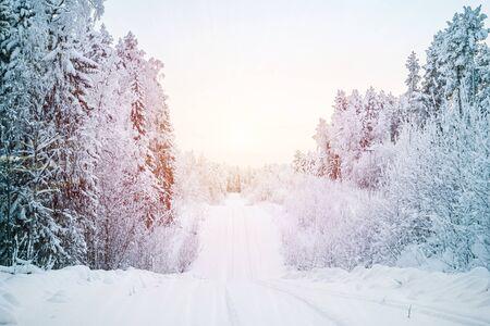 Hermoso paisaje invernal fabuloso, la carretera atravesando el bosque, todo está cubierto de nieve.