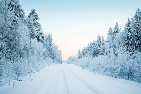 Beautiful fabulous winter landscape, the road going through the forest, everything is covered with snow. Stockfoto