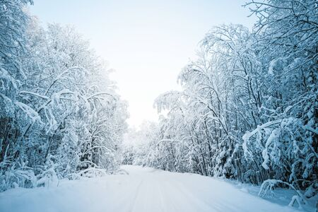 Beautiful fabulous winter landscape, the road going through the forest, everything is covered with snow. Stock fotó