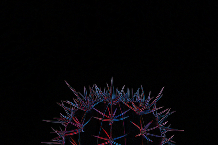 Pastel neon blue and pink light on cactus shape on black background