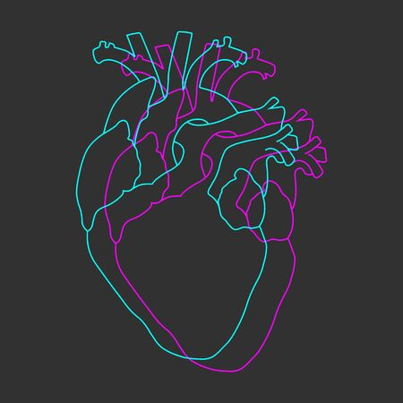 Neon blue and purple synthwave human heart line on dark grey background vector
