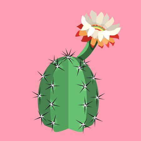 Blooming cactus on pink background vector
