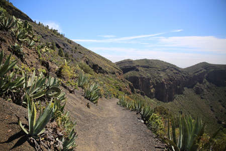 a trekking path surrounded by mountains and vegetation on a sunny day