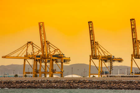 Cargo and transportation industry - cargo shipping and commercial terminal in seaport at sunset. Industrial landscape with gantry cranes in sea port. Archivio Fotografico