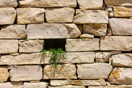 Stone wall with hole as texture