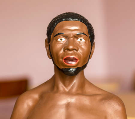 Kamchatka, Russia - 5 SEP, 2018: bust of an African to study at school and college in  in the study of biology. Petropavlovsk-Kanchatsky