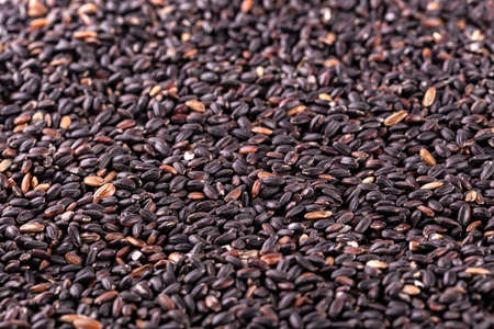raw black rice as background. Clipping path