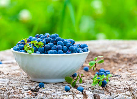 Fresh raw organic farm blueberry in white cup on the wooden background