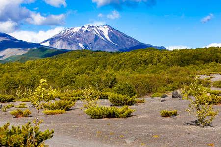 Views of Kozelsky volcano and the foot of the Avachinsky volcano on Kamchatka Peninsula 写真素材
