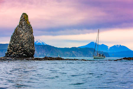 yacht near the cliffs with nests of sea gulls in the Pacific ocean