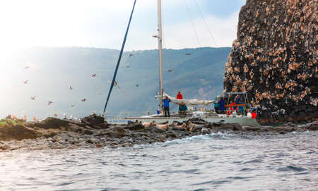 Kamchatka, Russia - July 20., 2019: Tourists on a boat trip on a yacht near the island watching the sea lions.