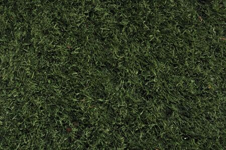 Fake Grass used on sports fields for soccer, baseball and football Stock Photo - 5994645