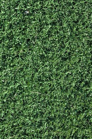 Fake Grass used on sports fields for soccer, baseball and football Stock Photo