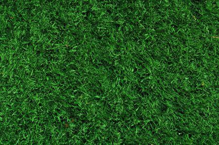 pasto sintetico: Falso c�sped utilizado en campos deportivos para f�tbol, b�isbol y f�tbol americano