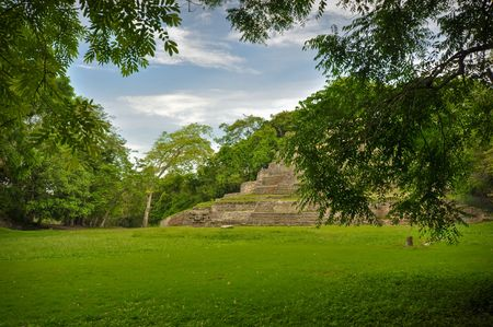 ancient civilisations: Mayan Temple Deep in the Central America Rain Forest Stock Photo