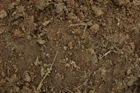 tenure: Mud or Dirt Background that text can be added to