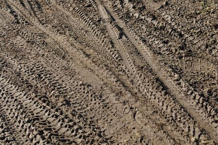 Mountain Bike Tracks in Mud Background photo
