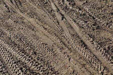 Mountain Bike Tracks in Mud Background photo