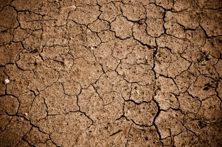 warming: Dried Cracked Dirt  or Mud Background