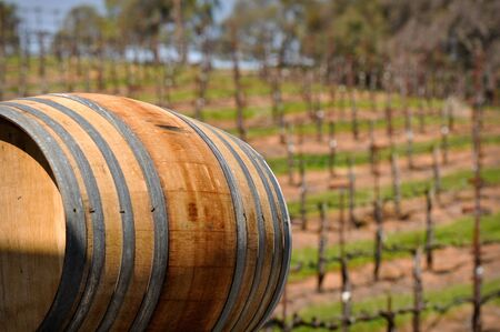 napa valley: Wine Barrel with Vineyard in Background