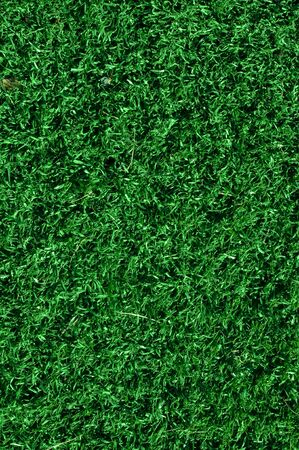 synthetic fiber: Fake Grass used on sports fields for soccer, baseball and football Stock Photo