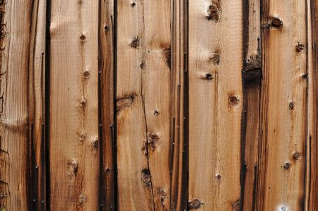 old wood floor: Old Western Knotty Pine Wood Background