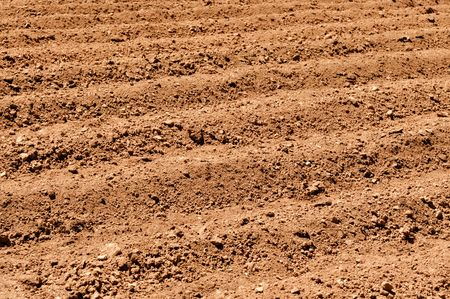 Plowed Dirt for Argiculture Background
