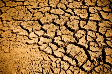 Cracked and Arid Ground Dry without water Stock Photo - 7195900